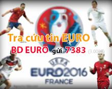 bóng đá euro, bóng đá copa